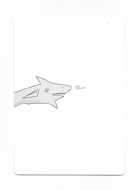 Requin.jpeg