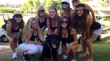 Half Moon Golf To Benefit AZ Search Dogs