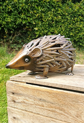 Hector the Hedgehog