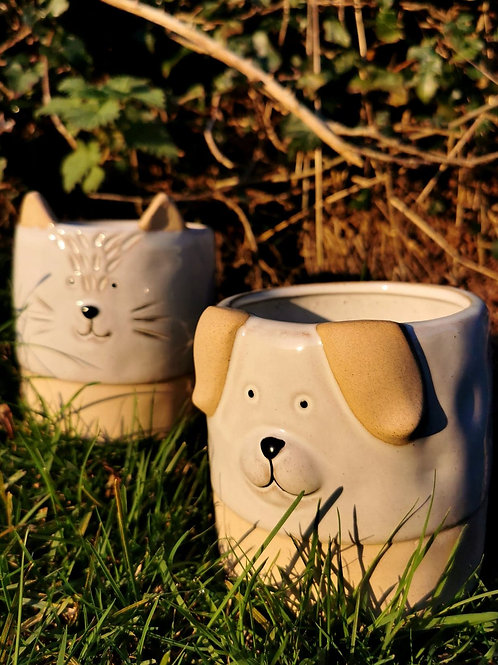 Cat & Dog Flower Pots