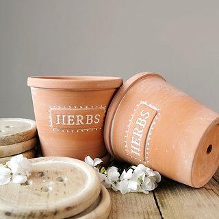 Terracotta Herbs Pot & Saucer
