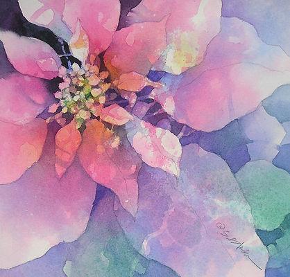 Poinsettia_12.jpg