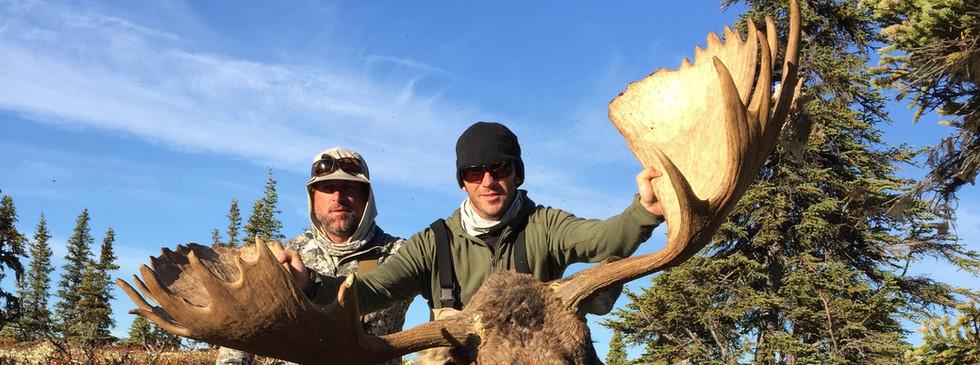 Anothe fine Moose taken on the Penninsula