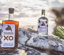 Sugarbird-Gin-Brandy.jpeg