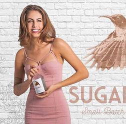 Ginapalooza-sugarbird-fynbos-gin-1104x42