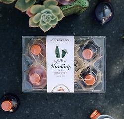 Sugarbird-Gin-Eggs-2.jpg