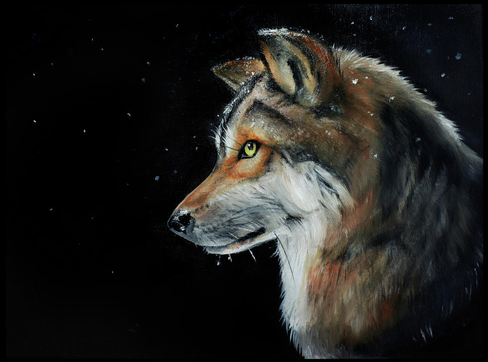 wolverine edited.jpg