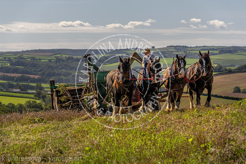 Four Shires at Work