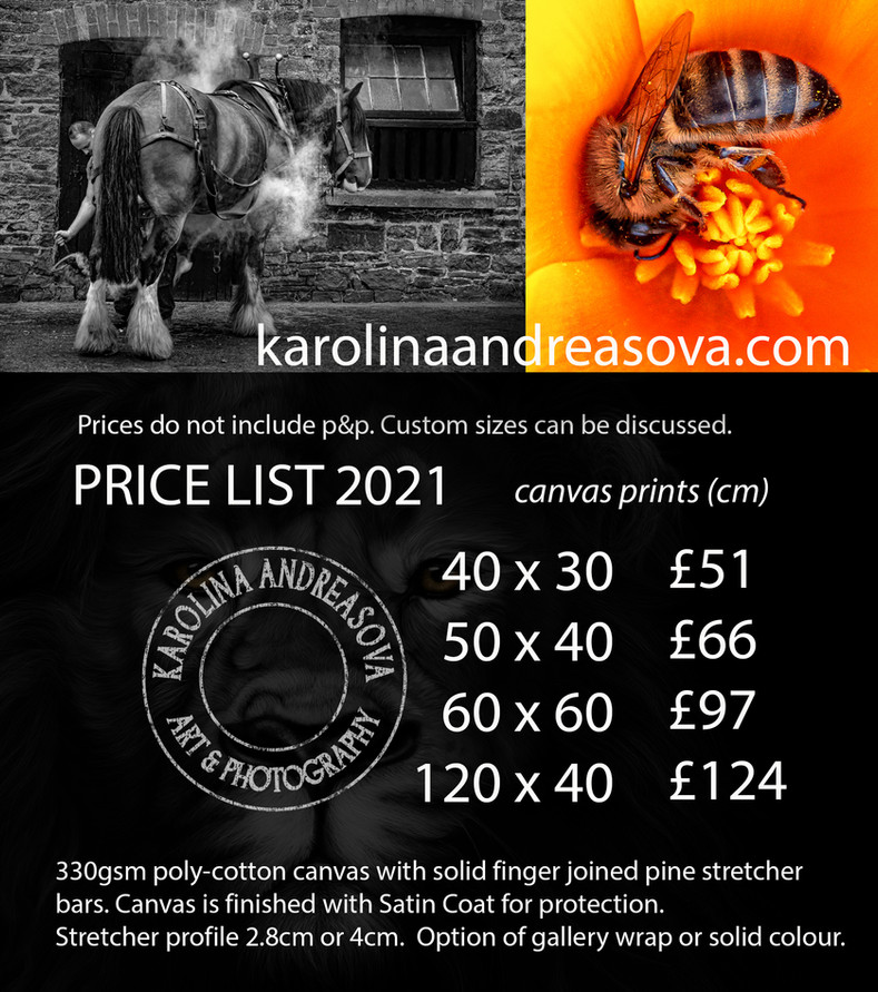 Price list 2021 canvas prints.jpg