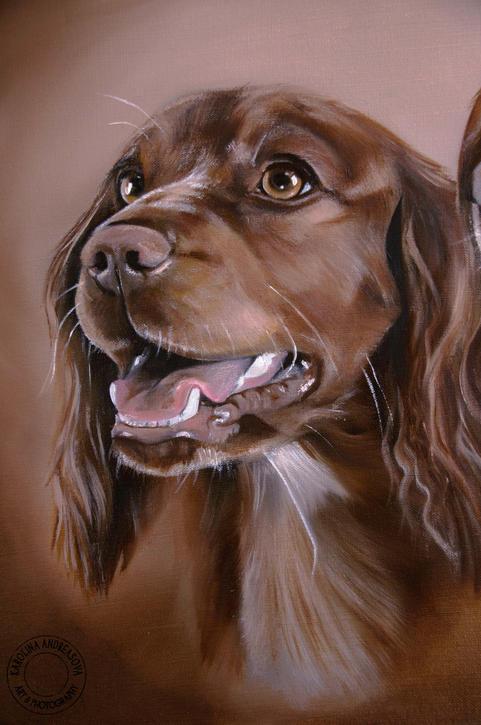 Spaniel dogs 2 detail of Copper watermar