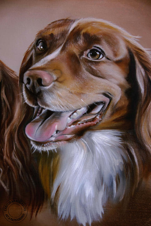 Spaniel dogs 3 detail of Tod watermarked