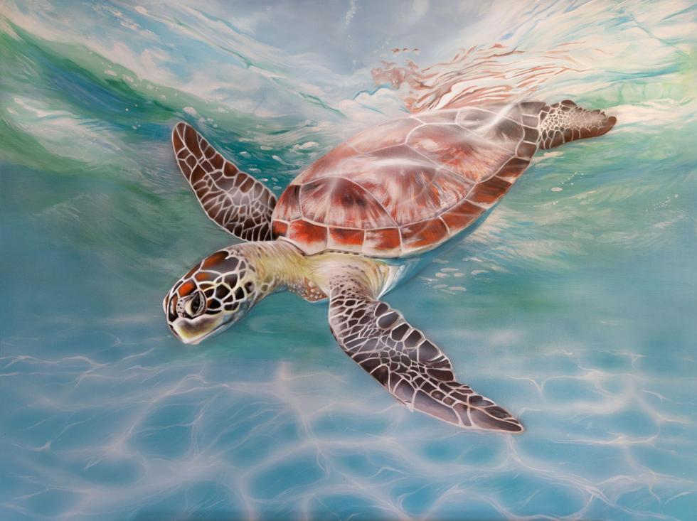 sea turtle digital edit.jpg
