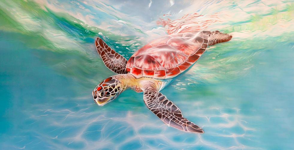 sea turtle digital edit 2.jpg