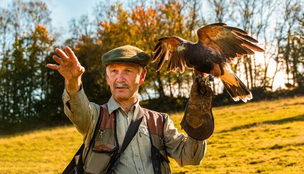 North Devon Hawk Walks.jpg