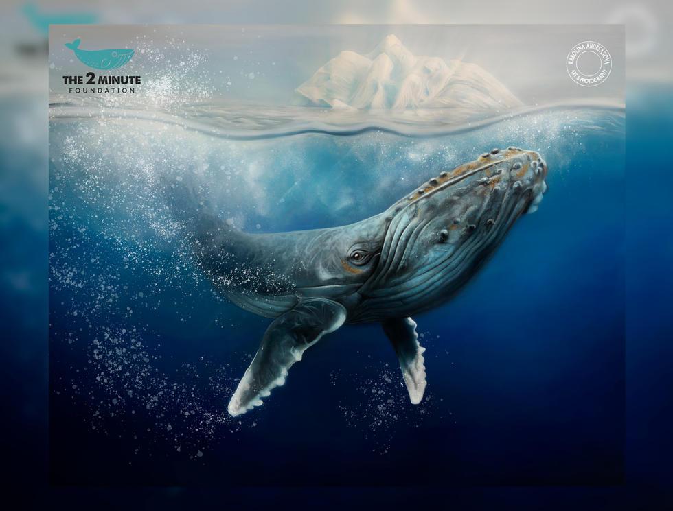 humpbag whale re edit - online preview.j