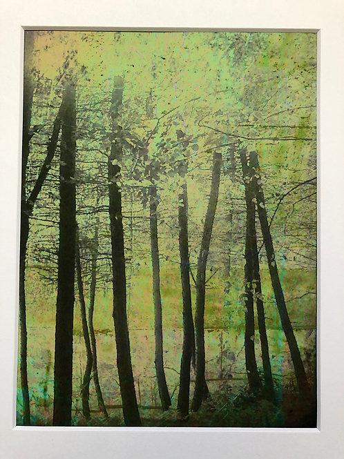 Justine Miller, Assemblage, blush, 30cm x 24cm mounted, print