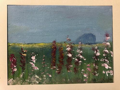 Liz Hardy, Bass Rock, spring, 29cm x 21cm mounted, acrylic