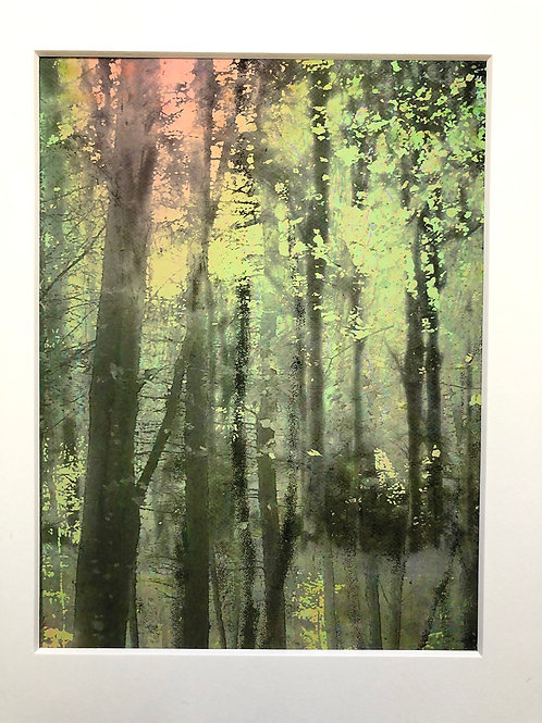 Justine Miller, Assemblage, paynes grey, 30cm x 24cm mounted, print