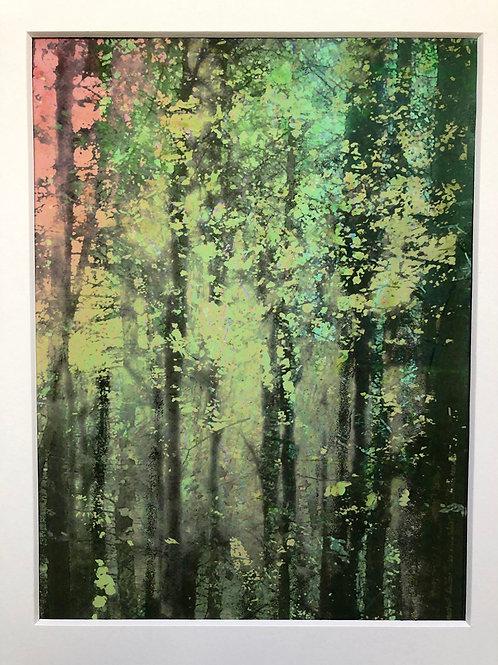 Justine Miller, Assemblage, rose, 30cm x 24cm mounted, print
