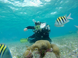 Referral dive classes.jpeg