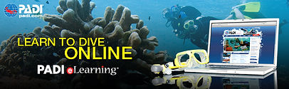 PADI eLearning: Learn to dive online