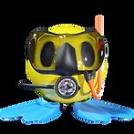 belize diving season.png