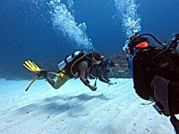 Padi Dive courses, .JPG