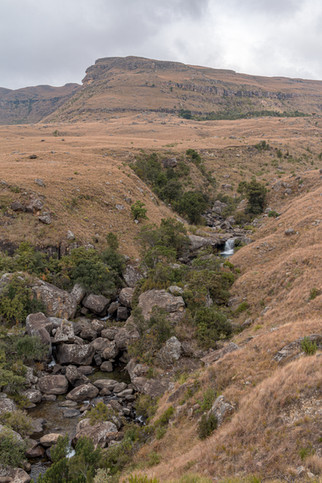 Kamberg Nature Reserve - May 2021
