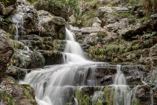 Jonkershoek Nature Reserve - August 2019