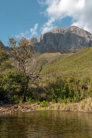 Jonkershoek Nature Reserve - October 2020