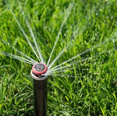 aussie-rental-maintenance-services-palmerston-0830-image.jpg