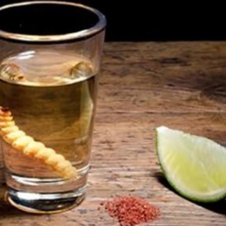 El Mezcal no provoca cruda y es la bebida perfecta para el consumo humano