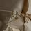 Thumbnail: The Spiral Hoops Earrings