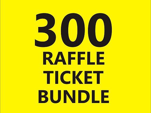 Pre-Order Special 300 Raffle Tickets