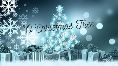 """O Christmas Tree"" ~ Lessons from a Fir"