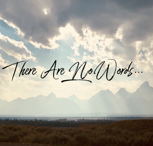 Kelly Neff Speaks - Tuesday Treasures - There are No Words - 8-6-19
