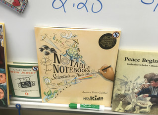 Notable Notebooks in the Wild