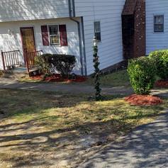 mulching, red mulch, spring clean.jpg