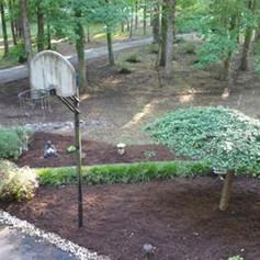mulching, leaf cleanup, leaf removal, we