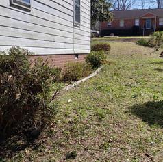 hedge trimming, plant maintenance, RVA,