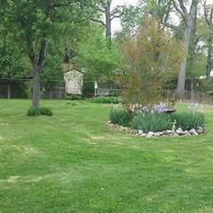 Backyard grass cutting, half acre lot, e