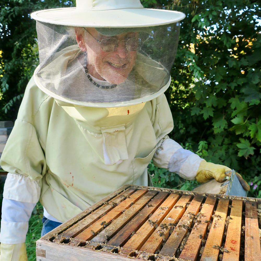 Beekeeper Joe Shea