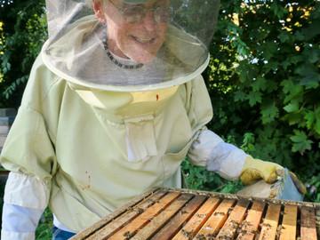 A Spoon of Honey: Beekeeper Joe Shea