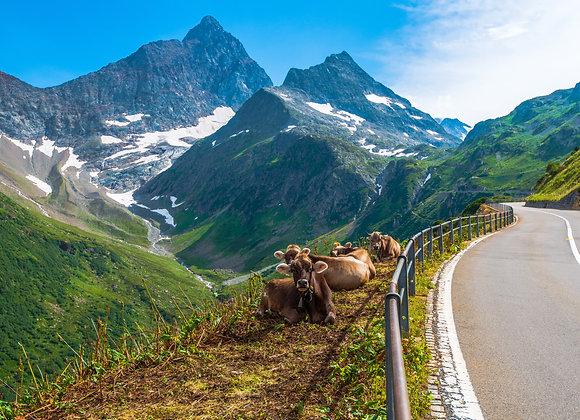 Swiss Alps & Lakes Deposit