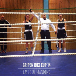 Dohaan i Gripen cup 2014.jpg
