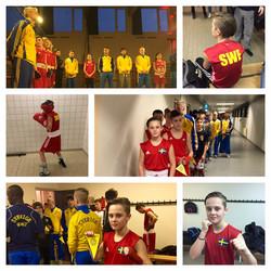 Sverige vs Danmark 2016
