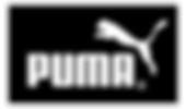 puma_preview.png