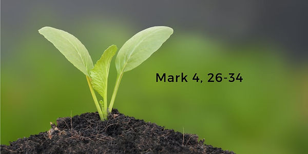 Mark4.jpg