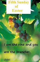 I am the vine 3.jpg