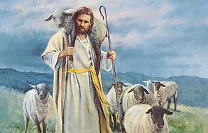 Shepherd3.jpg